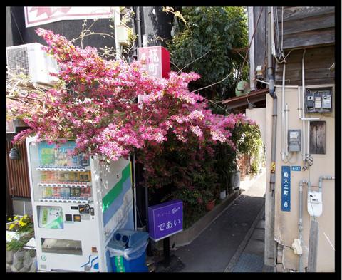Nagasaki_b39