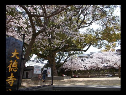 Nagasaki_b6
