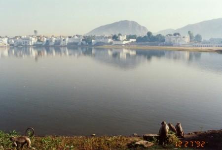 Pushkara5_2