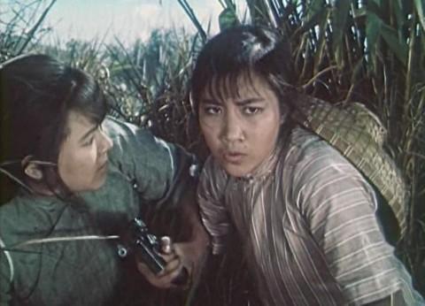 紅色娘子軍 謝晋1960年: ヒンドゥ-クシ海峡をこえて